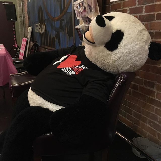 Someone is resting before he kicks off his dancing shoes tonight at the #fundyfringe dance party! 11:45 tonight at the BMO.